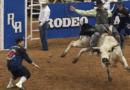 На родео бик проштрикнув шию тореодора