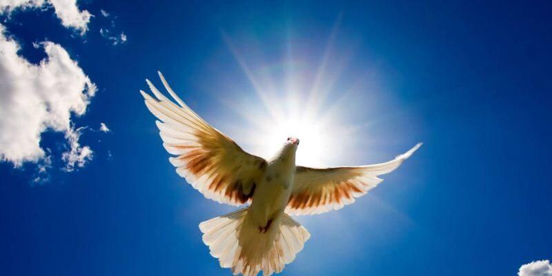 День Святого Духа  –  пряме продовження Трійці